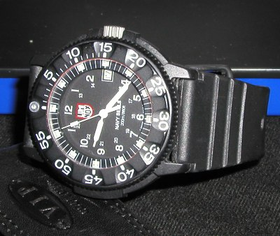 luminox_03.jpg (40257 bytes)